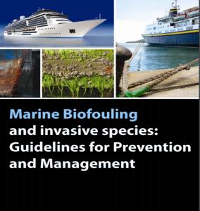 marine biofouling